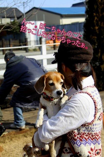 8_20110127215032.jpg