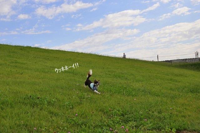 9_20100930112938.jpg