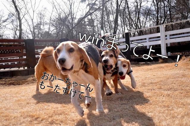 9_20110125162040.jpg