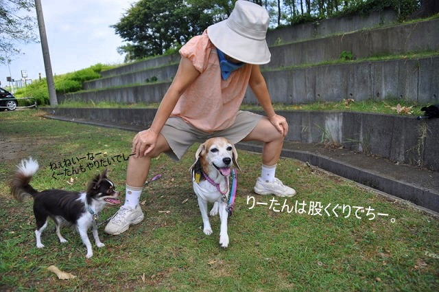 DSC_0130_20100910131537.jpg