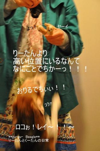 DSC_0357_20100419122012.jpg