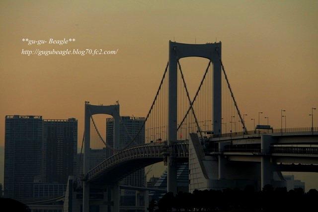 IMG_7427.jpg