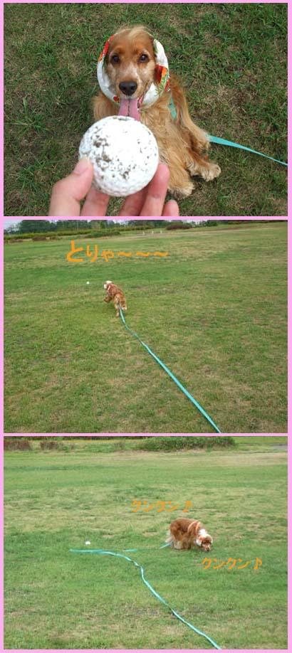 ボールより草
