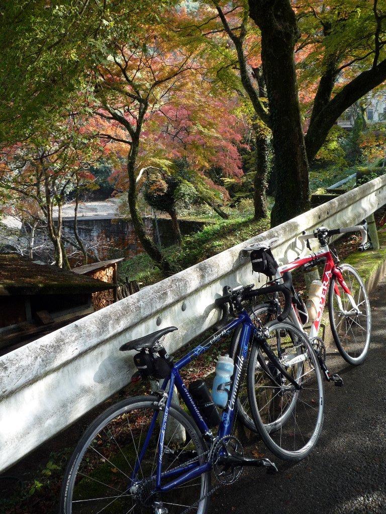 20091123_牛滝-03