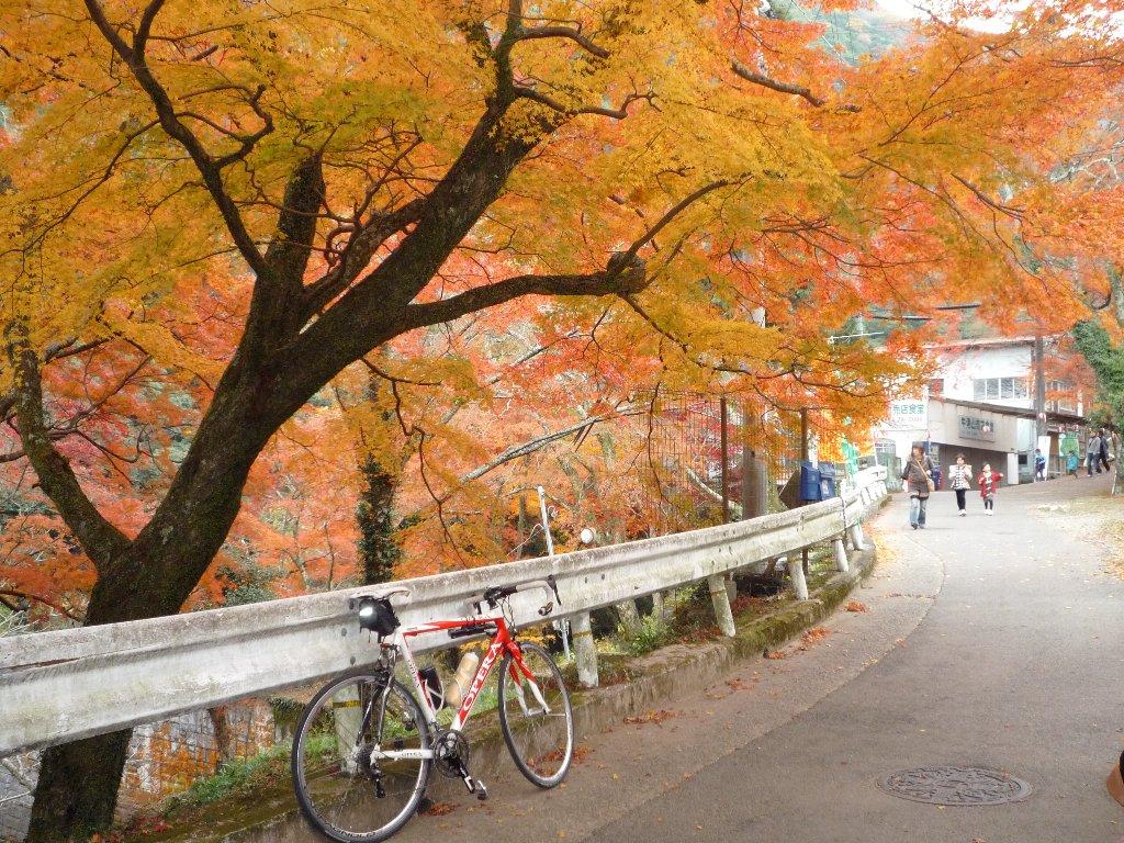 20091128_牛滝-01