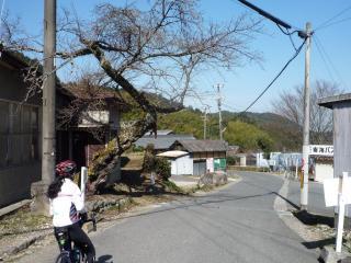20110227_牛滝-01