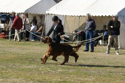 20101212show2