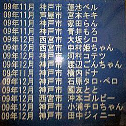 09年12月頃のメモリアルプレート