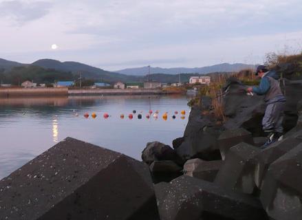 中秋の名月とhideki