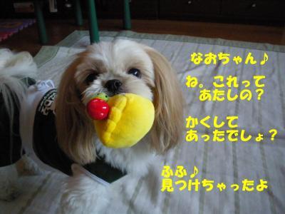 IMGP0993_convert_20091024230621.jpg