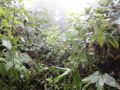 クテクンの滝・アトサヌプリ 035