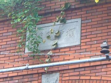 横須賀隧道めぐり11