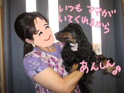 100727-fuji2.jpg