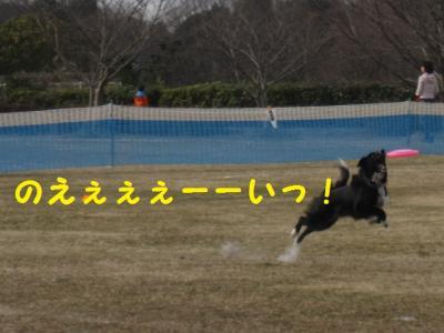 Xキャッチ!1