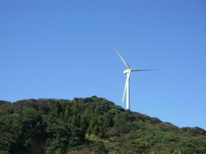 風車IMGP1890