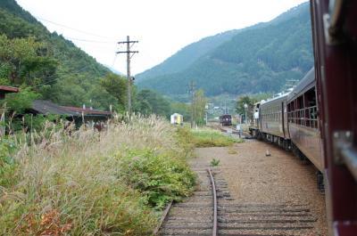 わたらせ渓谷 トロッコ列車