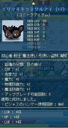 eri_20110223220724.jpg