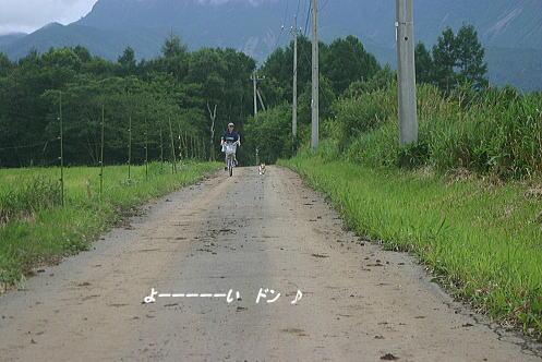 野辺山19