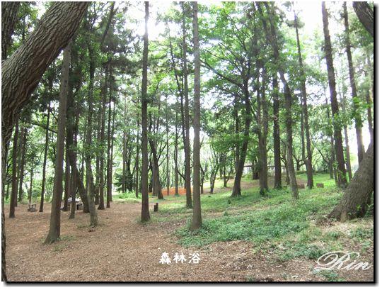 20110724-9.jpg