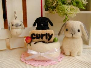 suzu curly  073