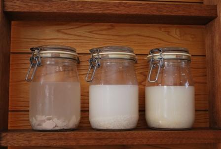 2012.1.15お米の酵母 004