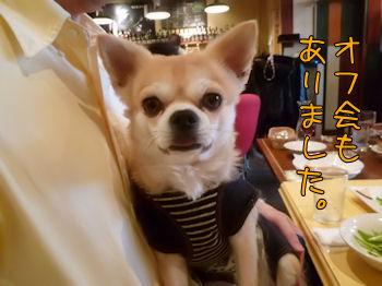 komusan_1219_008