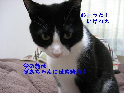 IMG_7622.jpg