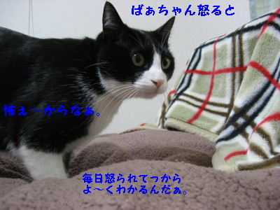 IMG_7624.jpg