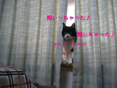 IMG_7629.jpg