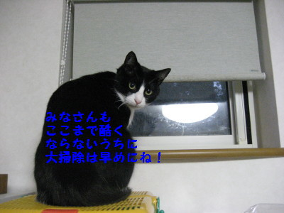 IMG_7906.jpg