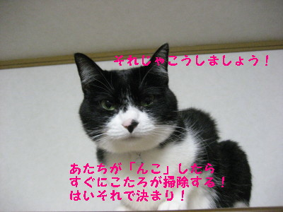 IMG_7910.jpg