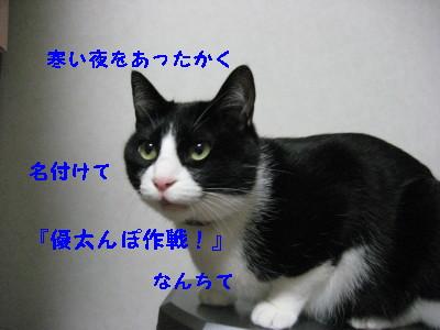 IMG_8009.jpg