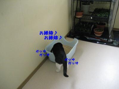 IMG_8074_20091224090449.jpg