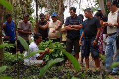 アグロフォレストリーの実地研修を受けた農民が他の農民に指導をしている