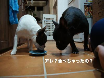 11_20110912221842.jpg