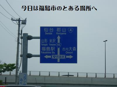 1_20110619212059.jpg