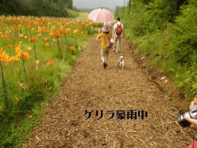 20_20110808225725.jpg