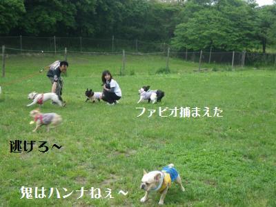 21_20110613234032.jpg