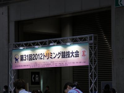 22_20120402223229.jpg