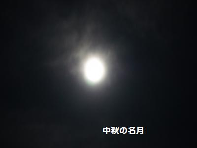 2_20110912221815.jpg
