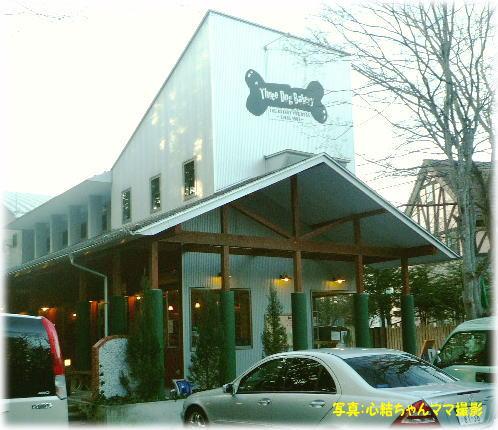 D*Cafe
