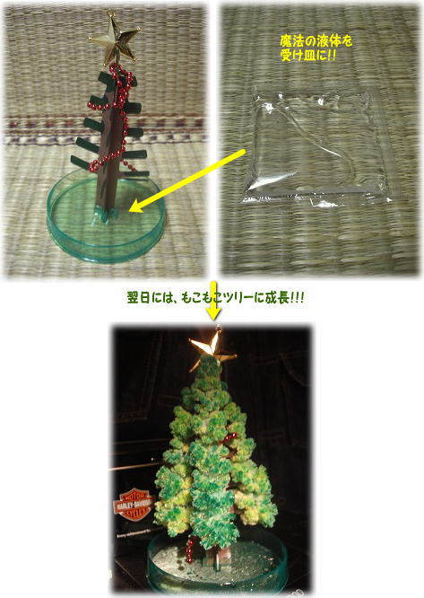 1魔法のツリー