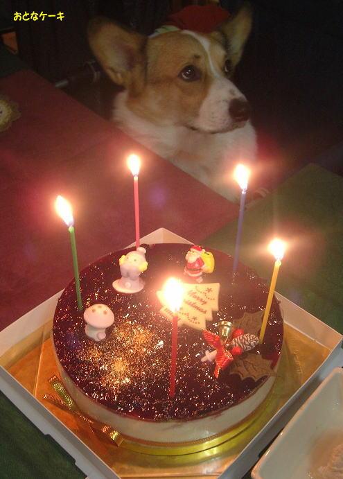 17おとなケーキ