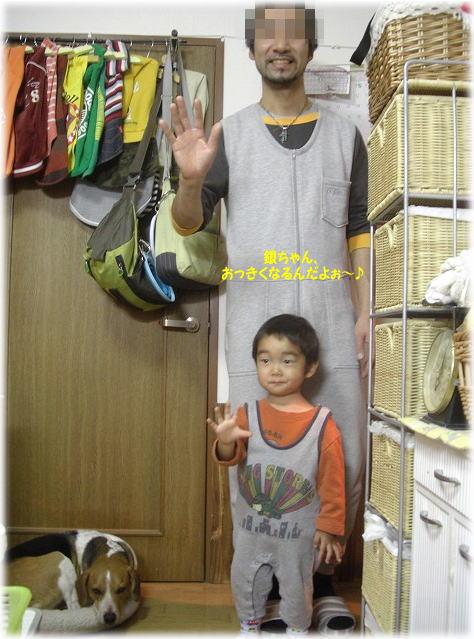 15銀ちゃん