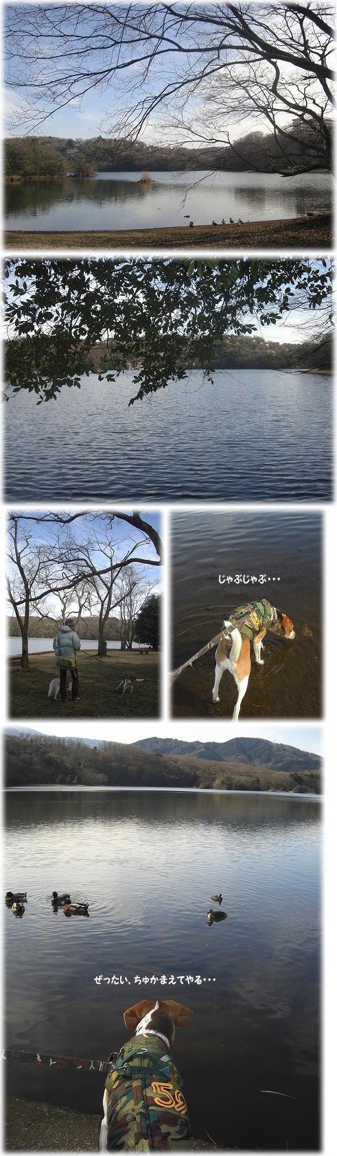 25一碧湖