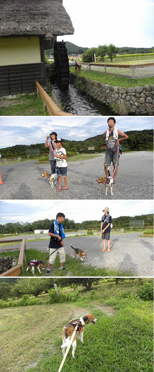 23お散歩