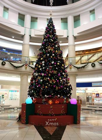 モスクリスマス10
