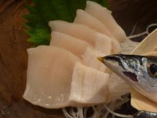 魚金2 (5)
