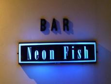 Neon Fish7 (4)