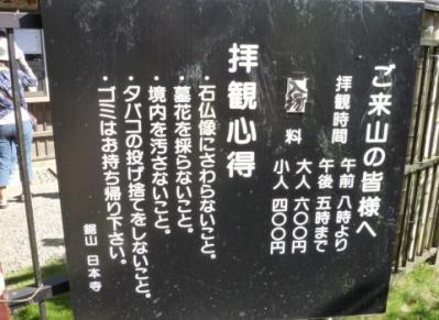 P1170327.jpg